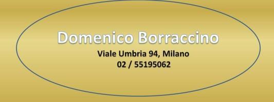 Domenico Borraccino